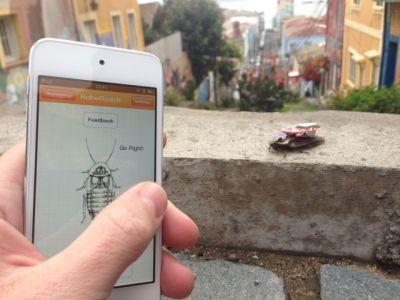 Обладатели iPhone могут управлять тараканами