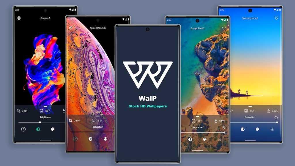 WalP - HD